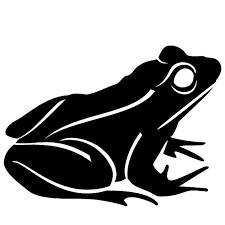 tribal frog designs best 25 frog tattoos ideas on tree frog