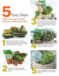 How To Make A Succulent Planter Download Succulent Container Solidaria Garden