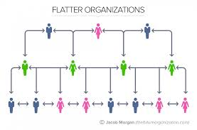 the 5 types of organizational structures part 3 flat organizations
