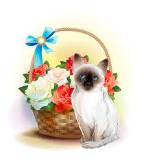 happy birthday card siamese kitten stock vector image 87664064