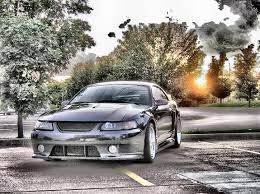 2003 roush mustang specs 124 best mustang roush images on mustangs ford