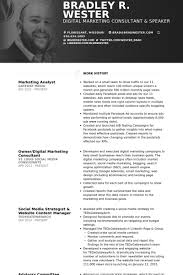 marketing analyst resume samples visualcv resume samples database