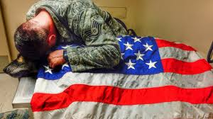 Usa Flag Rules Former Military Dog Draped In American Flag After He Was Put Down