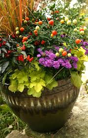Fall Vegetable Garden Plants by Fall Container Gardening Vegetables Gardening Ideas