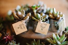 plant wedding favors 25 let grow succulent favor tags wedding favor tags