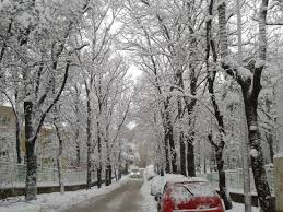 nature winter snow turkey road bursa cars beautiful trees