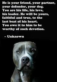 boxer dog sayings best 25 dog quotes ideas on pinterest puppy quotes pet quotes
