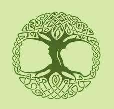 celtic tree of mara freeman