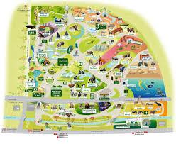 Map Of Animal Kingdom Theme Park Maps Mapsamillion Pinterest Zoos
