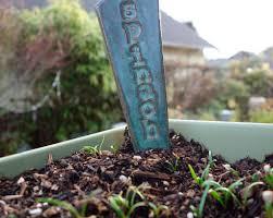 garden planning 101