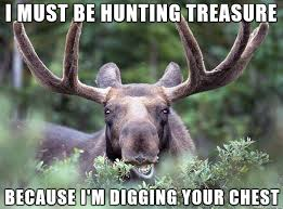 Moose Meme - this moose looked so damn confident that i had to make him into a