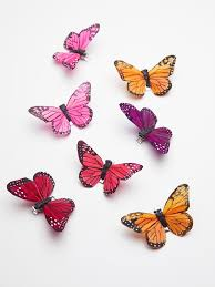 butterfly hair clip butterfly hair clip 7 pack 48 where to buy butterfly hair