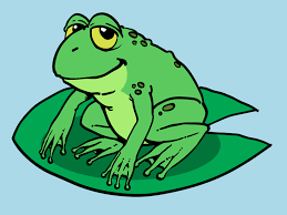 simple drawing of a frog how to draw a cartoon frog 10 steps with