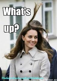 Royal Family Memes - 254 best royal memes images on pinterest princess kate kate