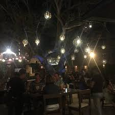 cool tree lights picture of barrio burger san jose cabo