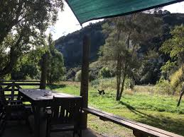 new zealand farmstay trout fishing glamping camping walks