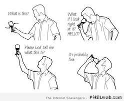Funny Wine Memes - 39 funny wine tasting meme pmslweb