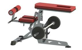 Bench Barbell Row Barbell Row Support Bench Crypted Molesting Chambers Pinterest
