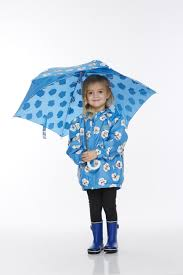 pansy colour changing umbrella holly u0026 beau