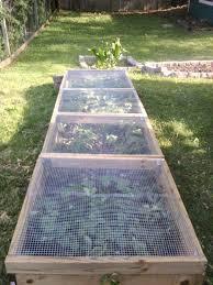 Home Design Garden Architecture Blog Magazine Best 25 Home Vegetable Garden Design Ideas On Pinterest Home