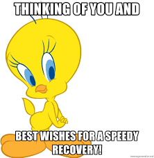 Speedy Meme - thinking of you and best wishes for a speedy recovery tweety bird