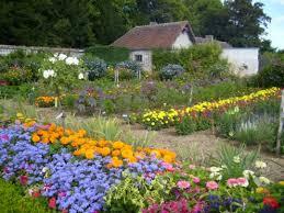 flower garden and seasons flowers that bloom all year dengarden