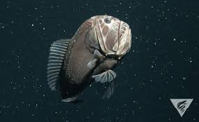 We Could Be Beautiful by Media Tweets By Mbari Mbari News Twitter