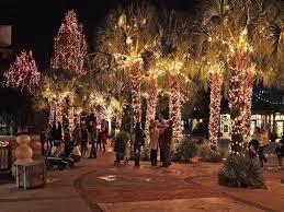 outstanding light ideas outdoor tree lights