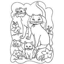 20 free printable cat coloring pages kids
