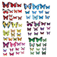 decor 89 butterfly wall decor patterns butterfly wall decor free large size of decor 89 butterfly wall decor patterns butterfly wall decor free shipping 12pcs