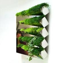 interior wall garden designs creative indoor vertical wall garden