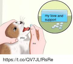 Me You Meme - my love and support you me httpstcoqv7jlfrsre love meme on me me