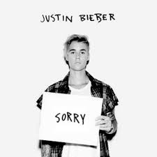 Sorry Meme - justin bieber s sorry know your meme