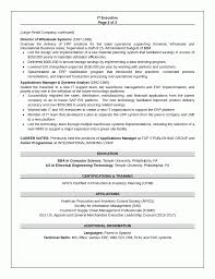 executive resumes samples resume sample 1 it executive resume career resumes it executive resume sample 1 of 3