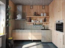 Horizontal Kitchen Cabinets Kitchen Walnut Kitchen Modern Kitchen Horizontal Wall Cabinet