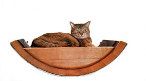 buy a hand crafted birala wine barrel wall hanging cat bed made
