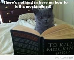 To Kill A Mockingbird Barnes And Noble To Kill A Mockingbird By Harper Lee