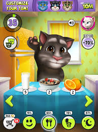 kitchen my talking tom wiki fandom powered by wikia