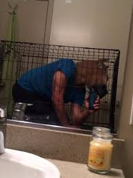 Extreme Bathrooms Photos From The Selfie Olympics Business Insider