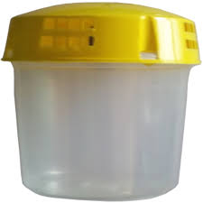 Homemade Fly Trap by Fruit Fly Trap Fruit Fly Trap Suppliers And Manufacturers At