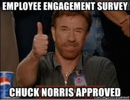 Engagement Meme - employee engagement survey chuck norris approved chuck norris