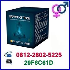 center hammer of thor 081228025225 jual obat kuat di ambon joywar
