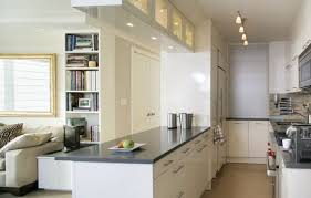 Kitchen Cabinets In Denver Uncategorized Awesome Stunning Best Grey Kitchen Cabinets In