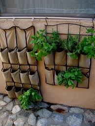 things you must know about your indoor herb garden lgilab com