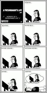 S Meme - a programmers life meme developer memes