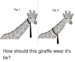 Tie Meme - fig 1 fig 2 how should this giraffe wear it s tie meme on