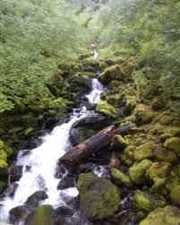 Wildfire Carson Wa by Waterfalls Ksnapped