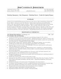 Resume Sample Jamaica by Vp Of Sales Resume Executive Resume Samples Resume Prime Matching
