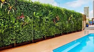 vertical gardens india s first vertical garden is at bangalore youtube