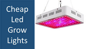Cheap Emergency Lights Top 5 Cheap Led Grow Lights From Reputable Manufacturers
